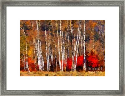 Framed Print featuring the photograph Autumn Tapestry by Clare VanderVeen