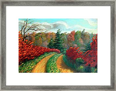 Autumn Trail Framed Print by Hanne Lore Koehler