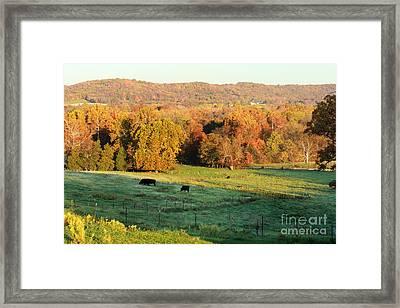 Farmland In Autumn Framed Print by Adam Long
