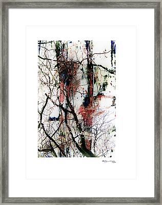 Autumn Tree Composition 3 Framed Print by Xoanxo Cespon