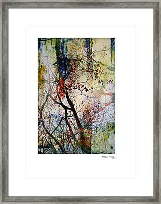 Autumn Tree Composition  Framed Print by Xoanxo Cespon