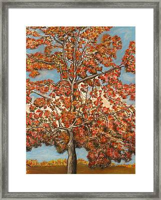 Autumn Tree Framed Print by Michael Anthony Edwards