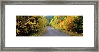 Autumn Trees Along Road In Mt Hood Framed Print by Panoramic Images
