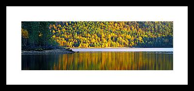 Glen Affric Framed Prints