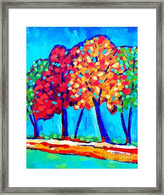 Autumn Trees Framed Print