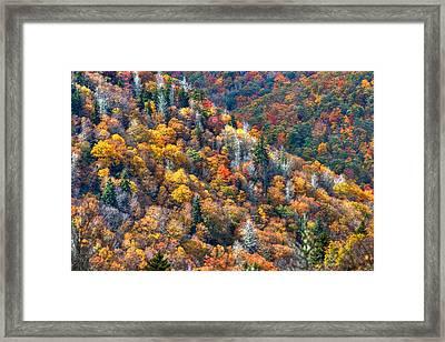 Autumn Trees In The Clouds Blue Ridge Parkway N C Framed Print by Reid Callaway