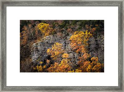 Autumn Trees Framed Print by James Barber