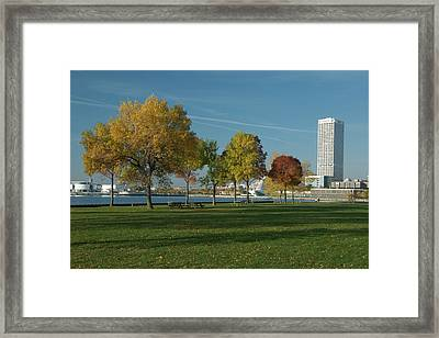 Framed Print featuring the photograph Autumn Trees by Jonah  Anderson