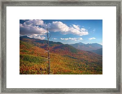 Autumn Trees On Mountain, Baxter Framed Print