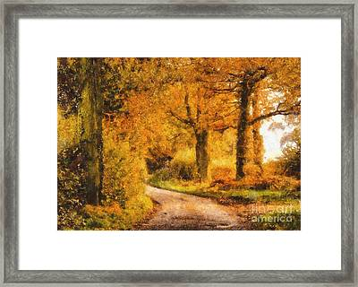 Autumn Trees Framed Print by Pixel Chimp