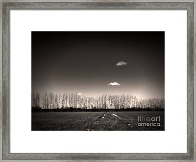 Autumn Trees Framed Print by Stelios Kleanthous