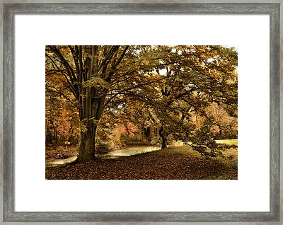 Autumn Umbrella Framed Print by Jessica Jenney