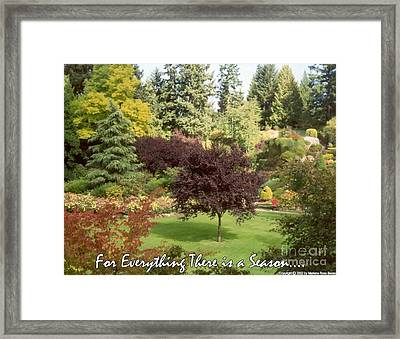Autumn Victoria Bc Framed Print by Marlene Rose Besso