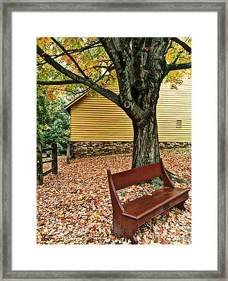 Framed Print featuring the photograph Autumn Wait by Geri Glavis