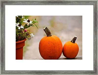 Autumn Waits  Framed Print by Danielle  Broussard