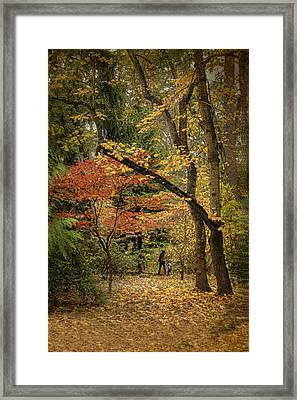 Autumn Walk Framed Print by Diane Schuster