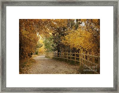 Autumn Walk Framed Print