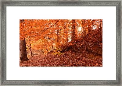 Autumn Walk Framed Print by Lourry Legarde