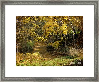 Autumn Walk Framed Print by Lutz Baar