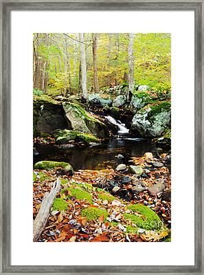Autumn Waterfall Framed Print