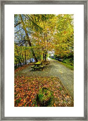 Autumn Way Framed Print by Adrian Evans