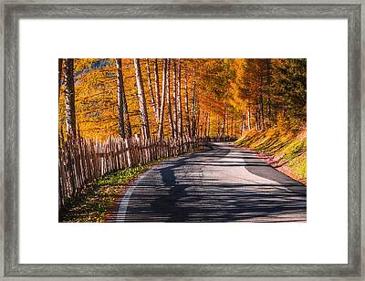 Autumn Way Framed Print