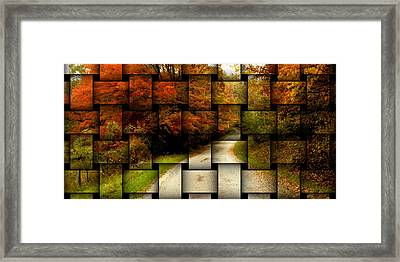 Framed Print featuring the photograph Autumn Weave by Katie Wing Vigil