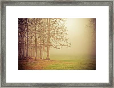 Autumn Whisper Framed Print by Olivia StClaire