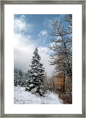 Autumn Winter Colors 2 Framed Print