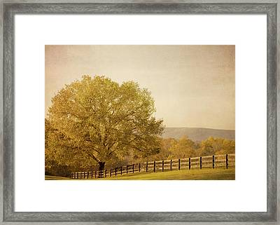 Autumn Wonders Framed Print by Kim Hojnacki