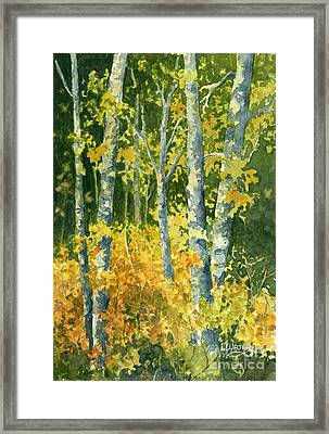 Autumn Woods Framed Print by Lynne Wright