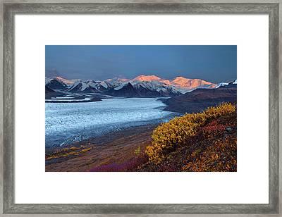 Autumn's Last Light Framed Print