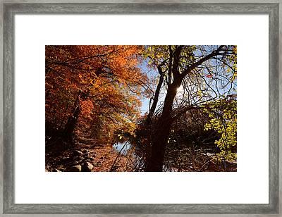 Autumnal Break Framed Print by Lourry Legarde