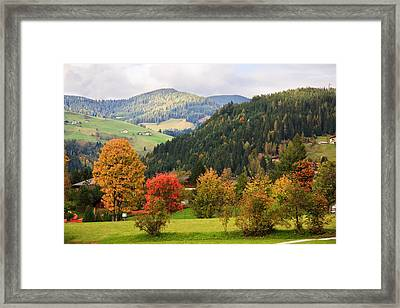 Autumnal Colours In Austria Framed Print