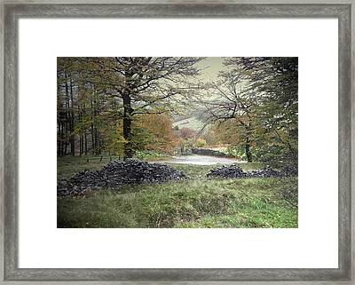 Autumnal Colours Near Fernilee Reservoir Framed Print by Litz Collection