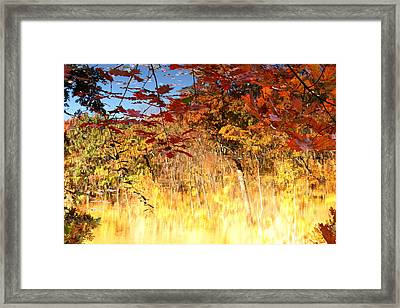 Autumnal Fire Framed Print by James Hammen
