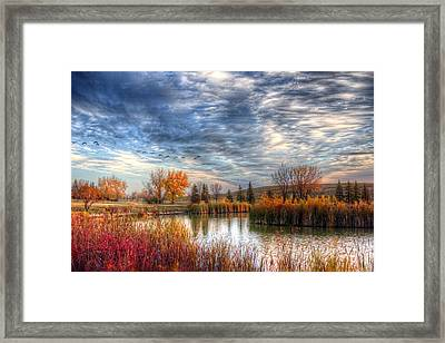 Autumnal Morn Framed Print by Larry Trupp