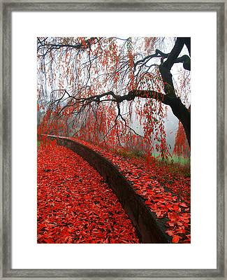 Framed Print featuring the digital art Autumnal Red by Bruce Rolff