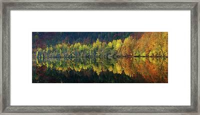 Autumnal Silence Framed Print