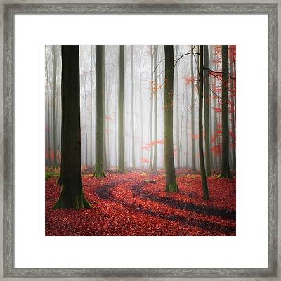 Autumnal Tracks Framed Print
