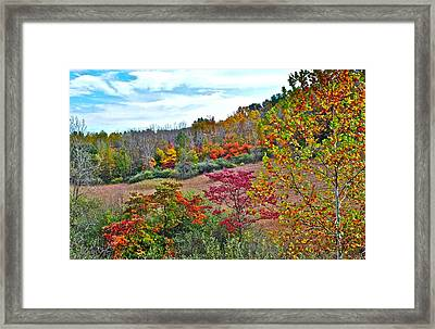 Autumnal Vista Framed Print by Frozen in Time Fine Art Photography