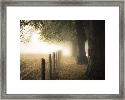 Autumnal Walkway Framed Print by Chris Fletcher