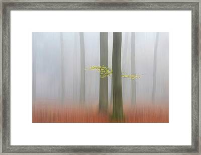 Autumnmorning Framed Print by Huib Limberg