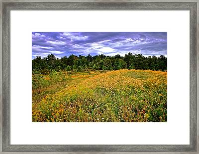 Autumns Brilliance Hdr Framed Print by Frozen in Time Fine Art Photography