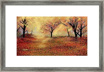Autumn's Colors Framed Print