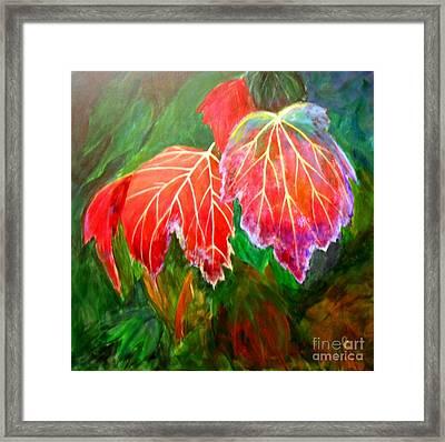 Autumn's Dance Framed Print