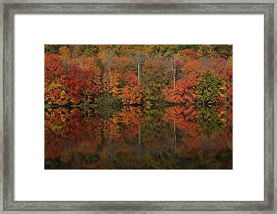 Autumns Design Framed Print by Karol Livote