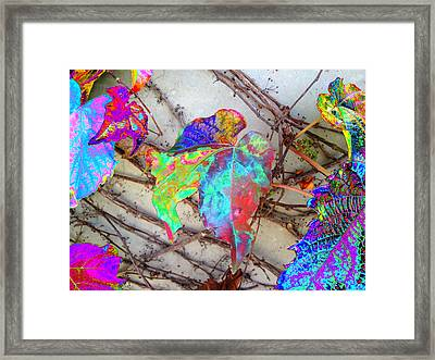 Autumns Distortion        Second One Framed Print