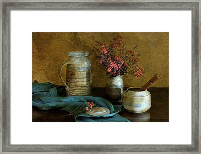 Autumn's Earth Framed Print by Diana Angstadt