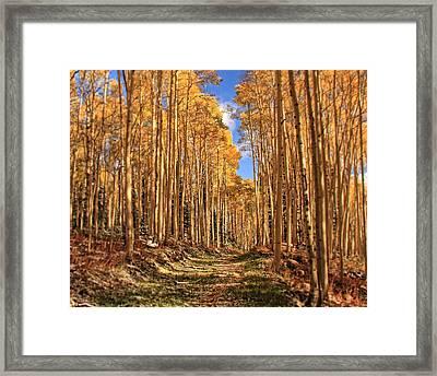 Autumn's Embrace Framed Print by Gene Praag
